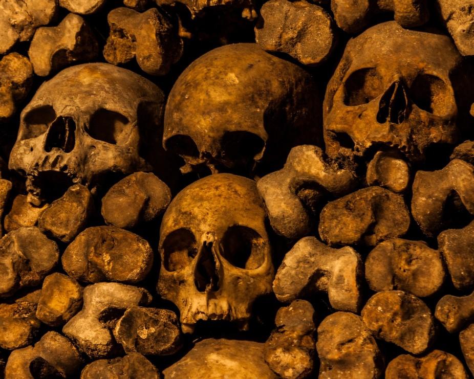 Skulls... We Are 138