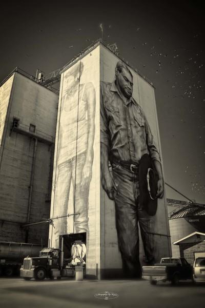 OK Foods Grain Towers