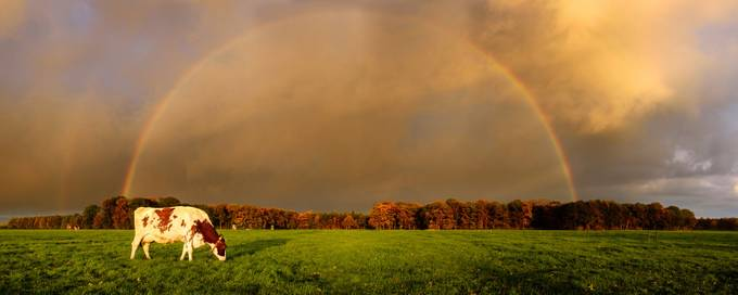 Farmland under a sky full of color by nandoharmsen - Rainbows Overhead Photo Contest