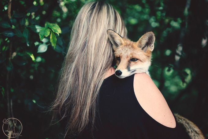 Foxy and the Beauty by bjrngotzmann - People And Animals Photo Contest