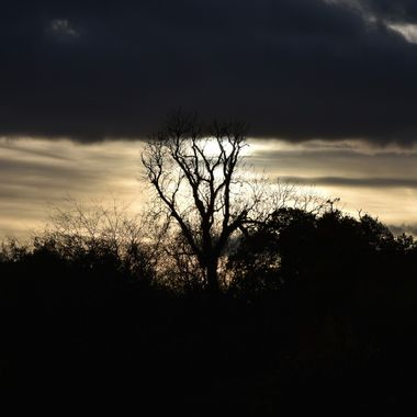 Taken in Hanworth Air Park West London as the sun was going down.