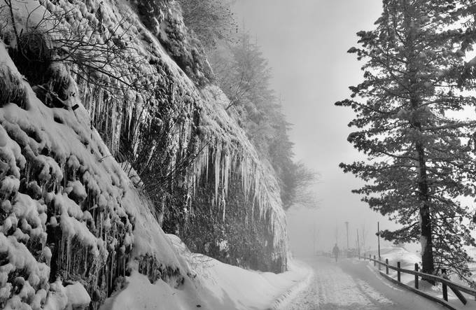 ice and fog by susanplss-bryant - Winter Roads Photo Contest
