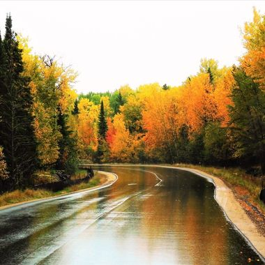 Rainy fall shot along the road to Voyageurs National Park Visitors Center International Falls, Mn. Nikon Coolpix 6500