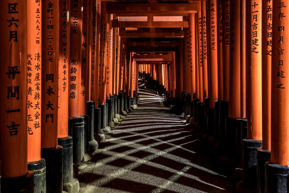 Torii along a path at Fushimi Inari-taisha