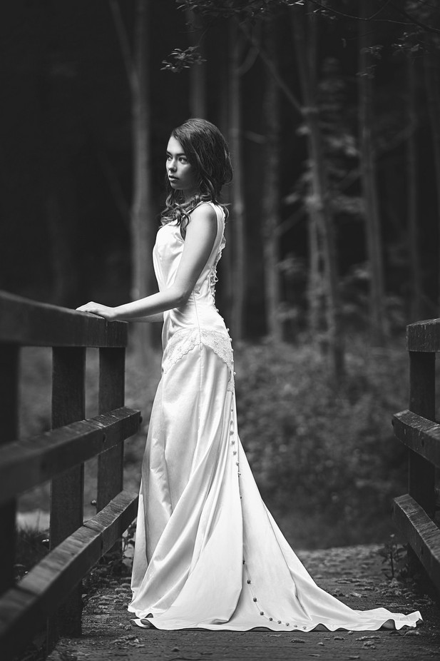 Sandrine by Denis09 - Weddings And Fashion Photo Contest