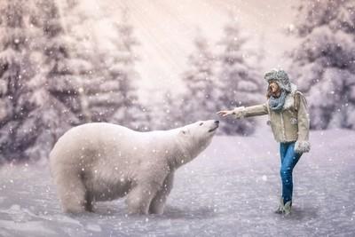 Baby Polar Bears and Snow