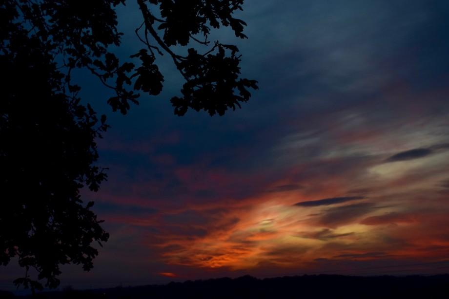 Warbleton Sunset 2