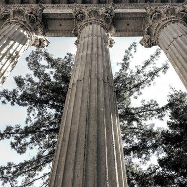 Column tree