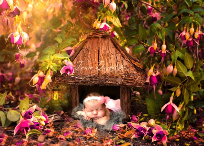 magical  by taniadravitzki - Babies Are Cute Photo Contest