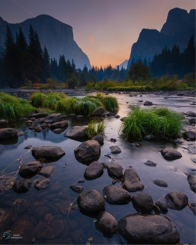 purple haze : yosemite smoke filled valley at sunrise