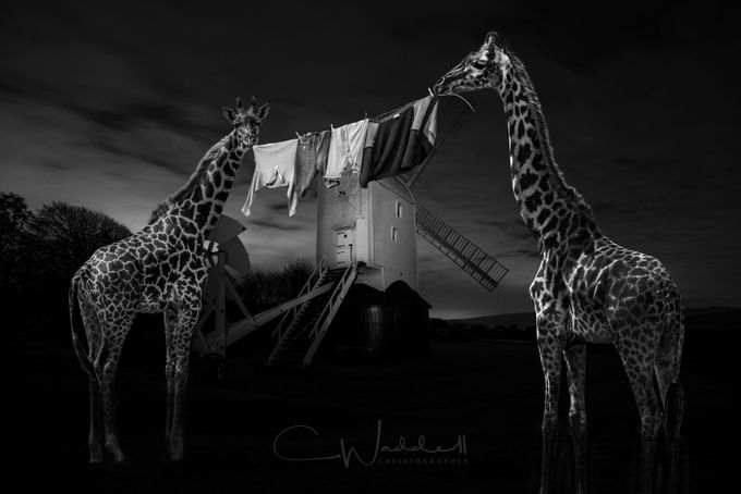 Jackie & Jilly at Night With Washing-2_Sig by Christographer - Black And White Compositions Photo Contest vol3