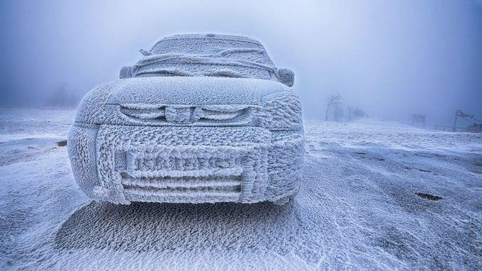 Kratzen angesagt by ollemasine - The Cold Winter Photo Contest