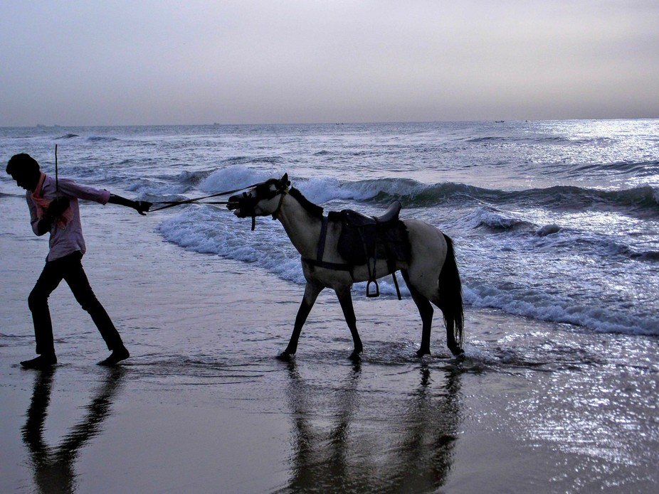 Captured this while waiting for the perfect shot of the sunrise. Even the horse finds it hard to ...