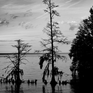 Sunrise on Lake Moultrie in Moncks Corner in South Carolina. I was at the Hatchery Boat Ramp. It was a great morning. We found a hidden beach and found a safe way to get to the beach.