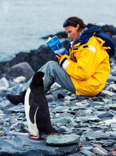 Antarctica reading