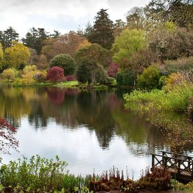 Mount Stewart is in County Down, Northern Ireland. The lake is surrounded with trees, bushes, flowers, wildlife. Stunning views and very colourful.