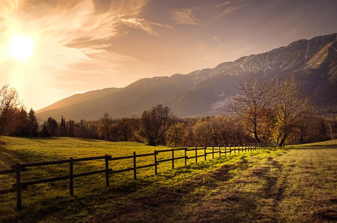 Fence by LuGiais - Covers Photo Contest Vol 43