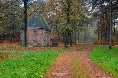 The Chapel In The Forest