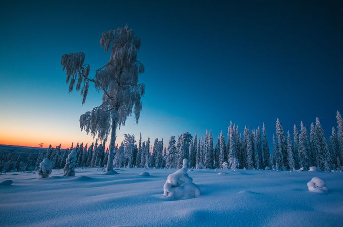 Image From A Stolen Time by juusovoutilainen - The Cold Winter Photo Contest