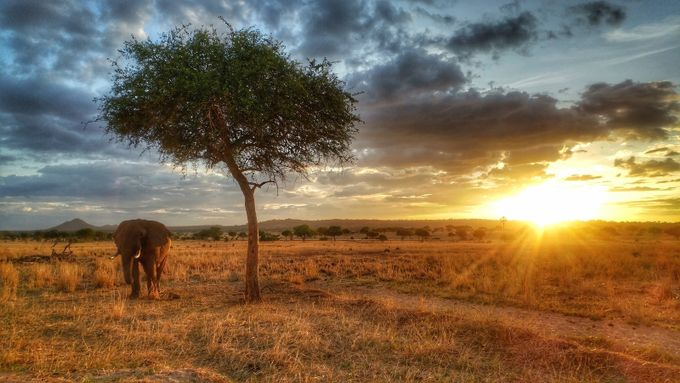 Tanzania Sunset by fotogurl350 - Social Exposure Photo Contest Vol 12