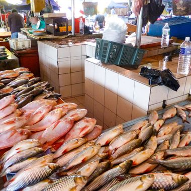 Fish market in Borneo.