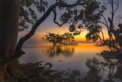 Nudgee Beach Sunrise