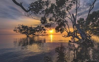 Nudgee beach sunrise. QLD. Australia