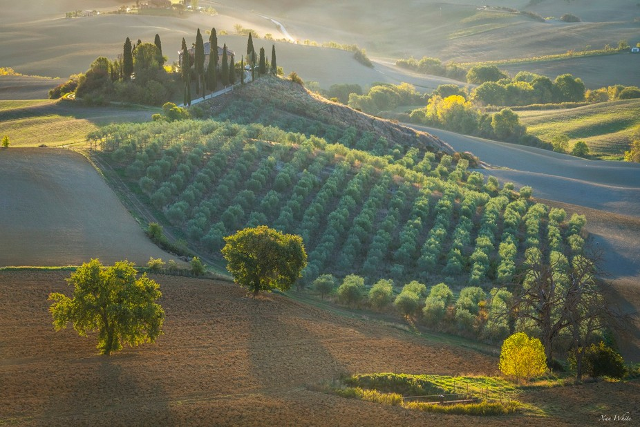 Podere Belvedere, San Quirico, Val d'Orcia, Tuscany, Italy