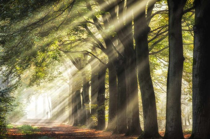 Intense sun rays by FabrizioMicciche - Creative Landscapes Photo Contest