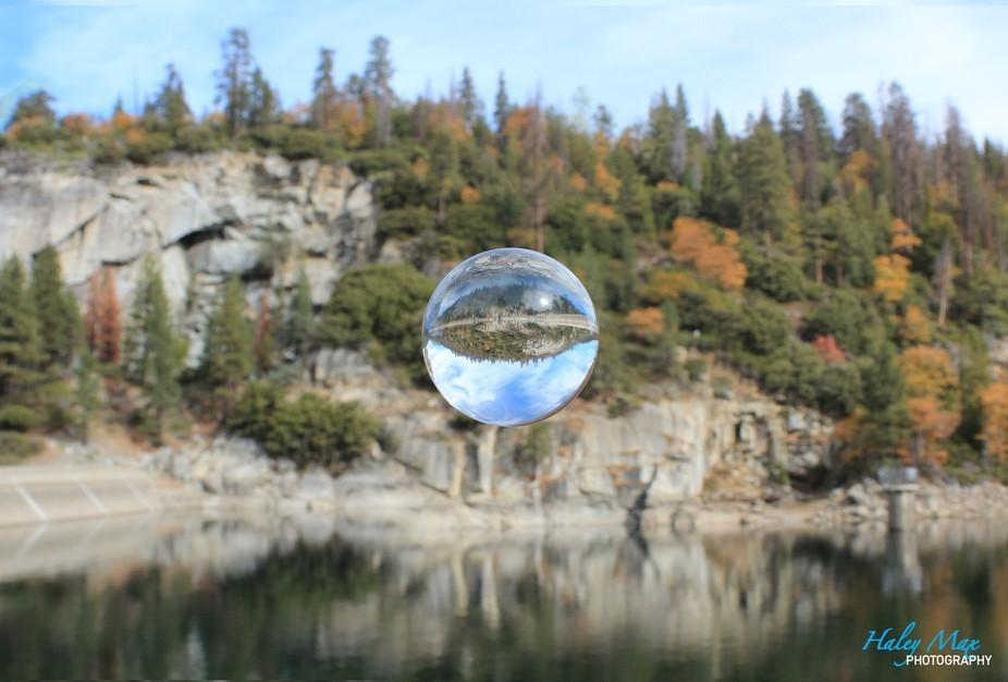 Floating Pinecrest Bubble