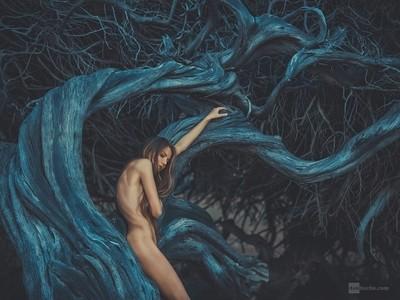 soul of tree