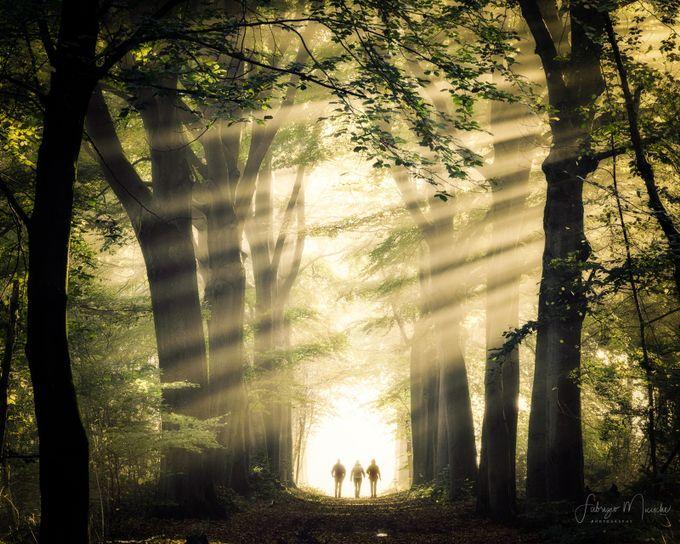 magic walking by FabrizioMicciche - Covers Photo Contest Vol 43