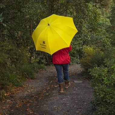 The rain does not stop people enjoying Bodnant Gardens. Umbrellas can be borrowed. They add colour to the day.