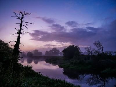 Dawn Hues