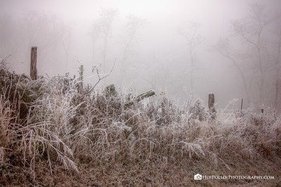 Enchanted_Frozen_Fog