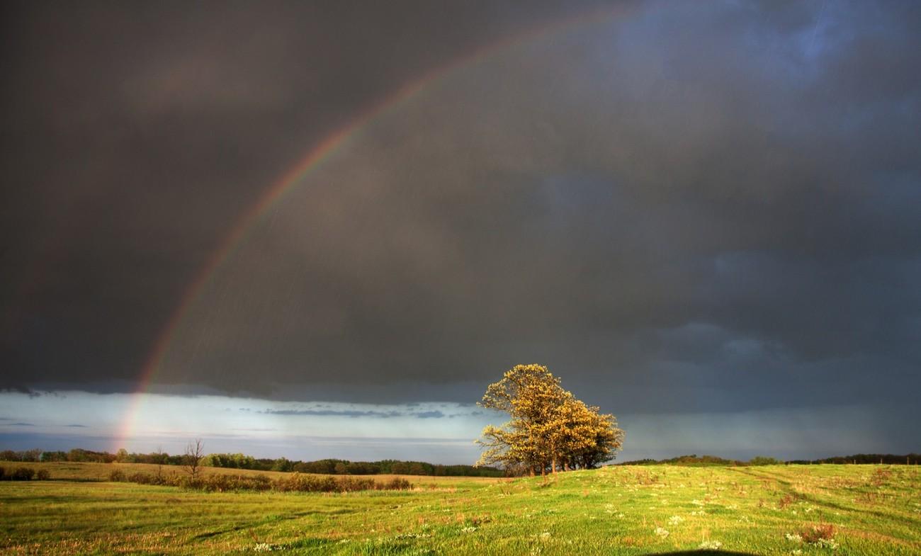 Rainbows and Rain