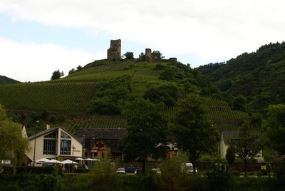 Borg ved Mosel