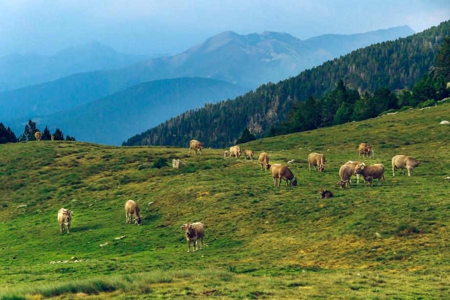 Principat D'Andorra Vall del Madriu-Perafita-Claror (UNESCO)