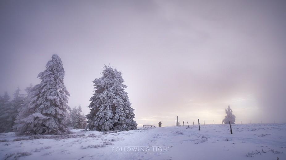 Taken recently in the Vosges. Winter is trying to take hold, since taking this image last week th...