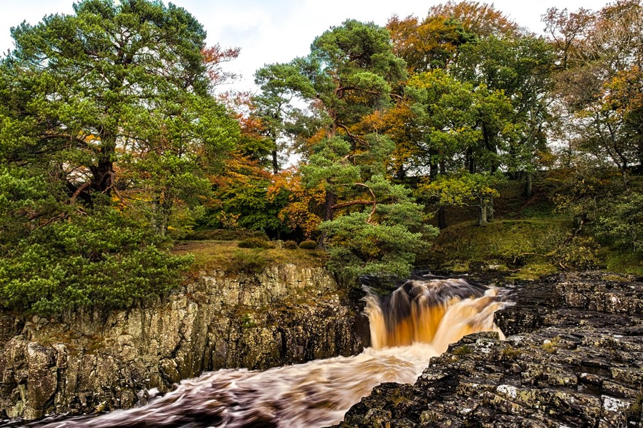 """Golden Waters of the River Tees low Force Co Durham."