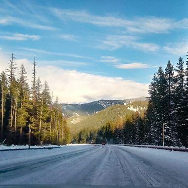 Near Mt. Hood.