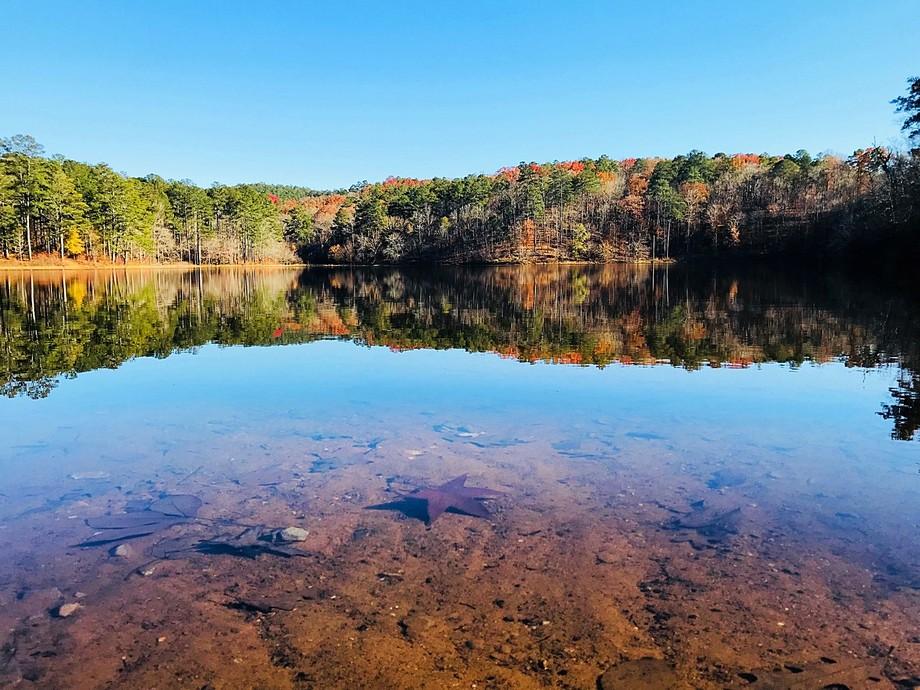 Sweetwater lake cheaha alabama