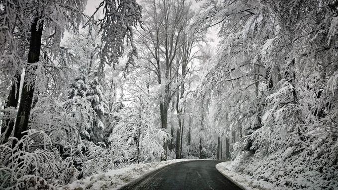 Winter Drive by bojben - Winter Roads Photo Contest
