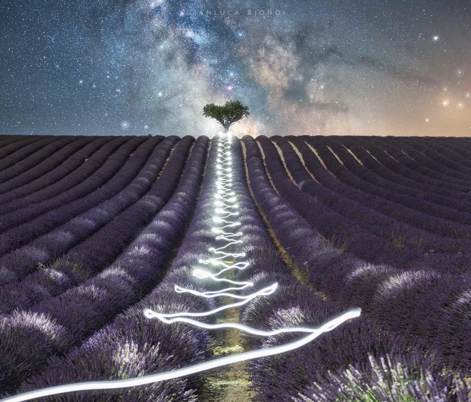 Alone|Gianluca Biondi
