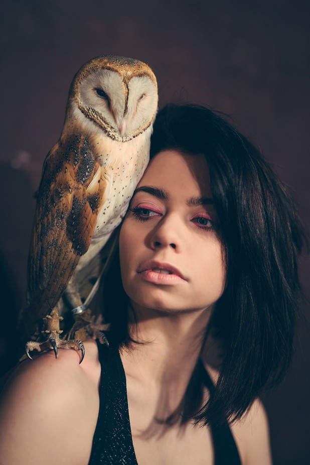 Owl by klepikovadaria - People And Animals Photo Contest