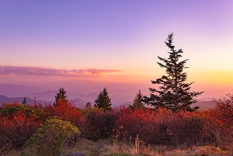 Andrews Bald in North Carolina at sunset with a touch of Fall colors.