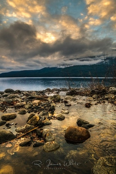 Lake Night VII