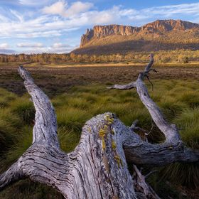 Mount Oakleigh, Lake St Clair- Cradle Mountain National Park, Tasmania.  One of the many beautiful scenes you see on the famous Overland Track. I...