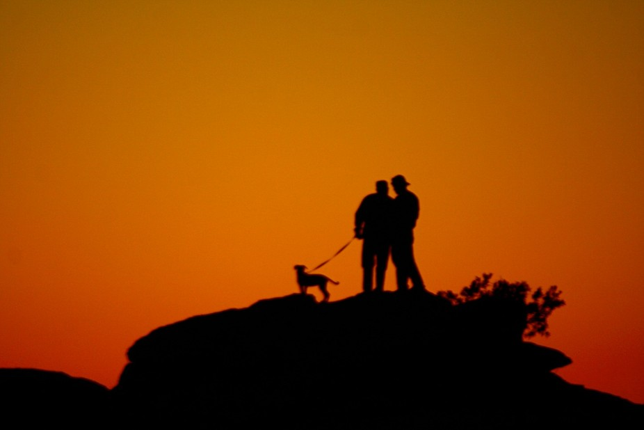 Sunsets on Mount Lemon in Tucson, AZ are beautiful. While looking at a sunset I spotted this silh...