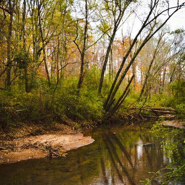 Noses Creek